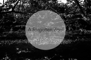 A Forgotten Zoo