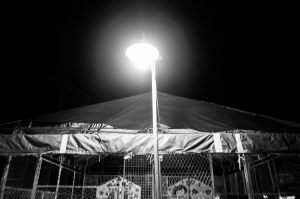 It's Not Only a Night Fair-3